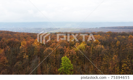 Aerial drone view of nature in Moldova 75894655