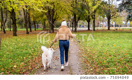 Woman with her dog in a park, autumn 75894849