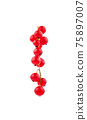 Red currant fruit closeup isolated on white background 75897007