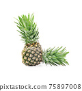 pineapple isolated on a white background 75897008