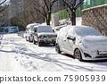 冬天 汽車 車 75905939