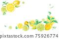 상쾌한 시트러스와 민트의 수채화 일러스트. 2 모서리를 장식 한 프레임 디자인. 배너 배경. 레몬과 라임. 75926774