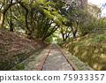 福岡 樓梯 腳步 75933357