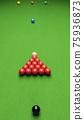 Snooker 75936873