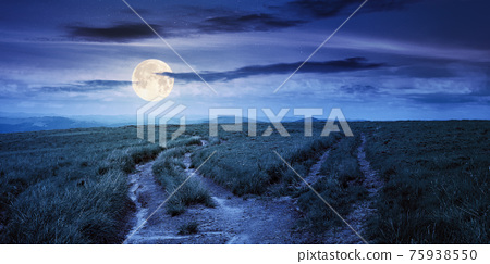 path through green grassy mountain meadow at night. beautiful summer landscape in full moon light. fine weather with fluffy clouds on the blue sky 75938550