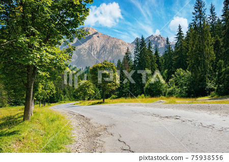 asphalt road through forested mountains. beautiful countryside transportation background. composite landscape with high tatra ridge in the distance. sunny weather in summertime 75938556