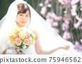 盛開的櫻花,櫻花背景,婚禮,日本新娘的肖像,新娘,婚禮前照片 75946562