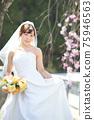 盛開的櫻花,櫻花背景,婚禮,日本新娘的肖像,新娘,婚禮前照片 75946563