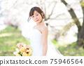 盛開的櫻花,櫻花背景,婚禮,日本新娘的肖像,新娘,婚禮前照片 75946564