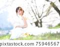 盛開的櫻花,櫻花背景,婚禮,日本新娘的肖像,新娘,婚禮前照片 75946567