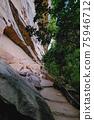 泰國 懸崖峭壁 懸崖 75946712