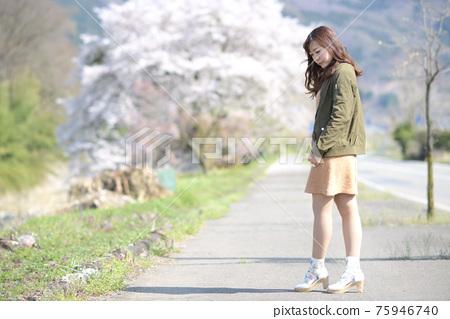 만개 한 벚꽃 벚꽃 배경 여성 초상화 75946740