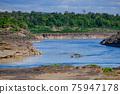 湄公河 河 老撾 75947178