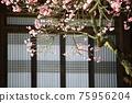아름다운봄,현충사 75956204