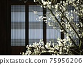 아름다운봄,현충사 75956206