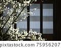 아름다운봄,현충사 75956207