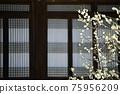 아름다운봄,현충사 75956209