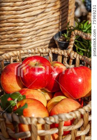 蘋果 75969231
