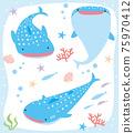 鯨鯊 沖繩 琉球 75970412