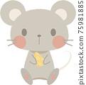 쥐 75981885