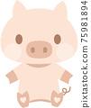 돼지 75981894