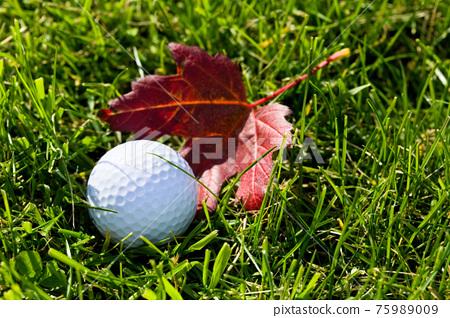 Golf Ball and Grass 75989009
