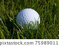 Golf Ball 75989011
