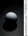 Golf Ball 75989012