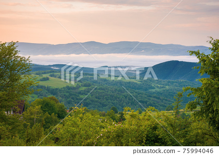 mountainous rural landscape at sunrise in summer. fog in the distant valley. green plants and trees on the hill. beautiful nature scenery with clouds on the sky 75994046