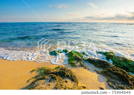 seascape on a sunny morning. summer vacation at the sea. yellow sand on the beach with rocks in seaweed. fluffy clouds on the blue sky 75994049