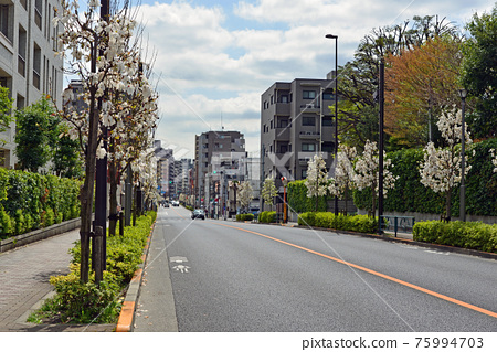 road, honmachi, motomachi 75994703