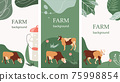 Set of agricultural backgrounds. Abstract design. Cows in the pasture. Social media templates. 75998854