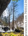 大雪鋪滿的路 寒冬 冬天 76003236