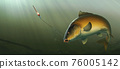 Fishing for carp with a float bait. Carp fish (koi) realism isolate illustration. Fishing for big carp, feeder fishing, carp fishing. 76005142