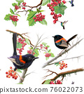 Birds on berry branch seamless pattern on white background 76022073