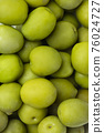 Olives and olive oil 004 76024727