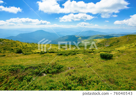 Carpathian Biosphere Reserve mountain ridge. green meadows summer landscape of the Chornohirskyi Massif in the eastern carpathians, ukraine. sunny scenery with fluffy clouds on the blue sky 76040543