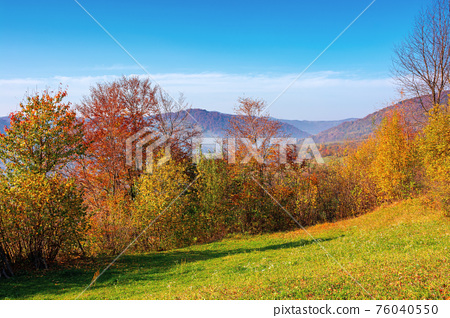 mountainous rural scenery in fall season. trees the hill in colorful foliage. village in the distant valley. sunny day with bright blue sky. traditional carpathian countryside of ukraine 76040550