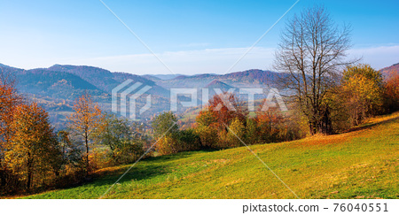mountainous rural scenery in fall season. trees the hill in colorful foliage. village in the distant valley. sunny day with bright blue sky. traditional carpathian countryside of ukraine 76040551