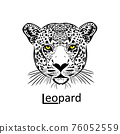 Leopard face. Graphic image. Vector illustration 76052559