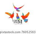 Bird watercolor. Colorful pigeons. T-shirt print. Vector illustration 76052563