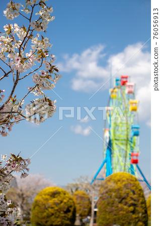公園 春天 春 76056913
