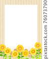 sunflower, sunflowers, summer 76073790