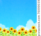 向日葵 向日葵園 花朵 76099039