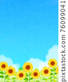 向日葵 向日葵園 花朵 76099041