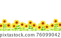 Background material_sunflower 76099042