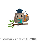 Owl bird template design Smart Education with Owl Symbol 76102984