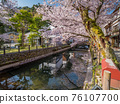 Kinosaki Onsen with full bloom of cherry blossoms 76107700