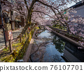 Kinosaki Onsen with full bloom of cherry blossoms 76107701