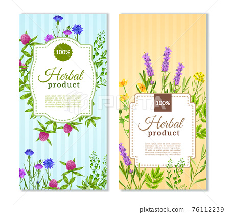 Herbs And Wild Flowers Banners 76112239